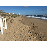 Day after the king tide Virginia Beach image